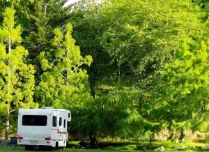 Camping at McLaren Falls