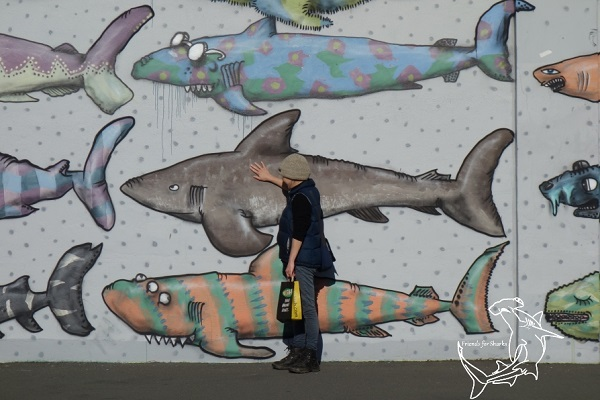 Shark Mural - Wellington (2)