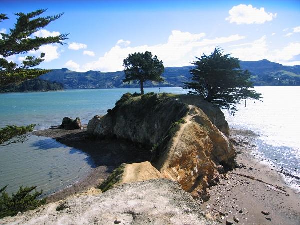 Otago Peninsula Graveyard