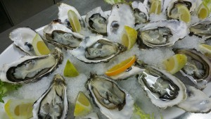 oysters-608905_640