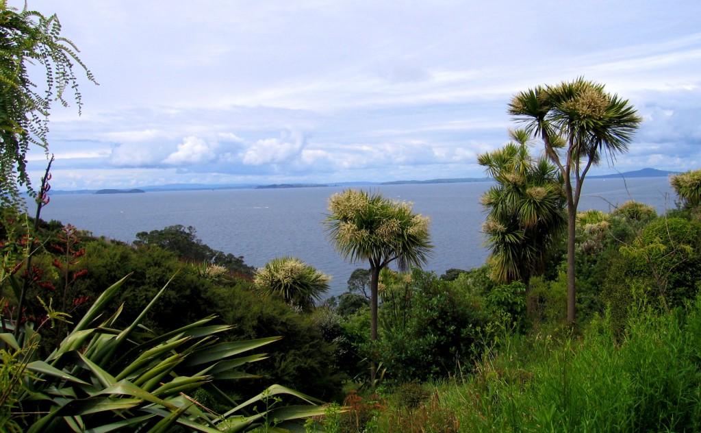 Tiritiri Matangi, New Zealand