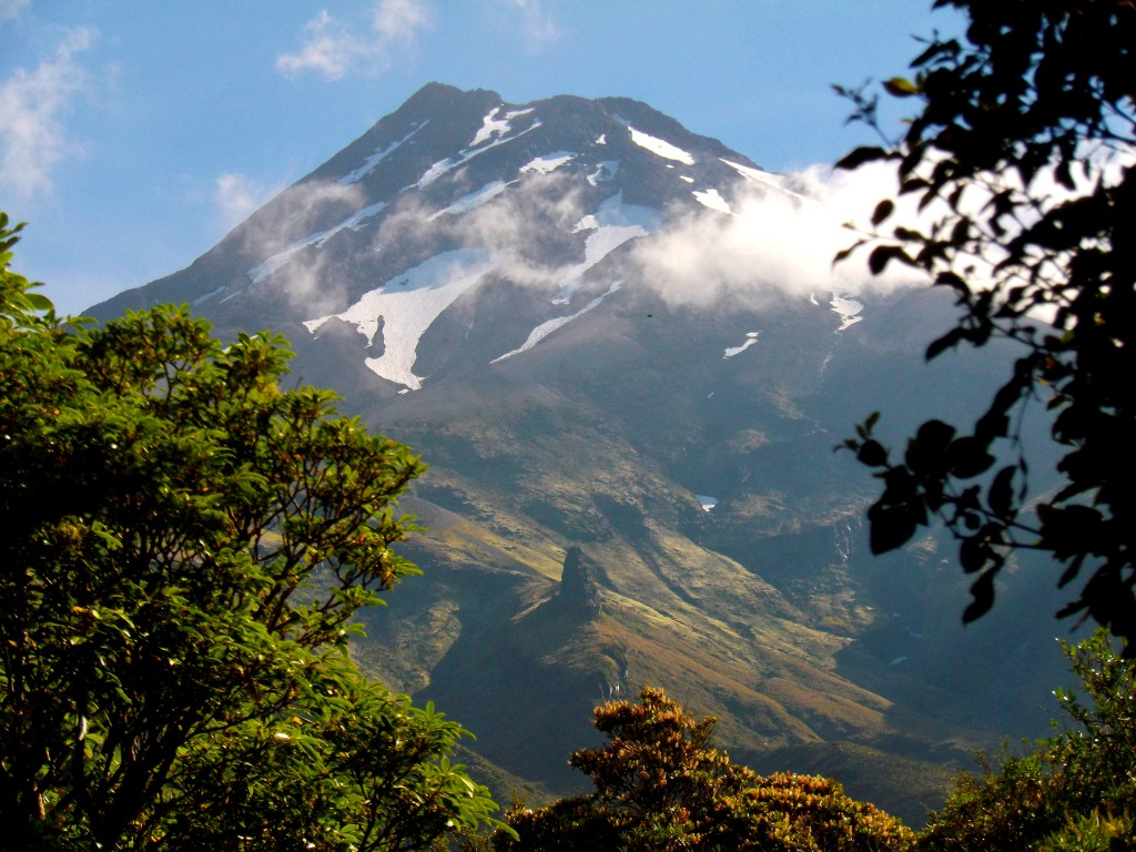 Taranaki, Egmont National Park by Abigail Simpson