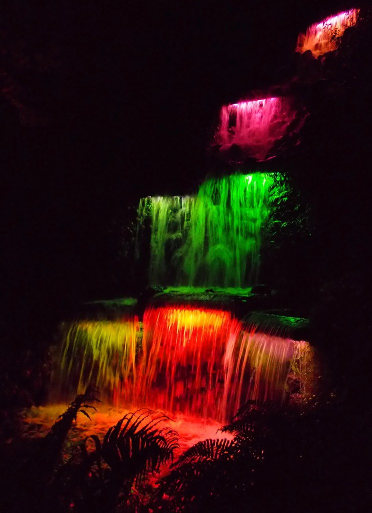 Pukekura Falls, Festival of Lights, New Plymouth